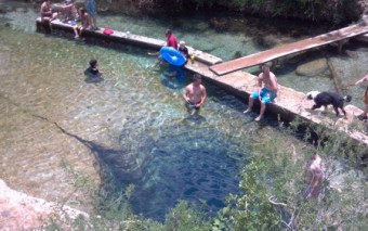Jacob's Well / Blue Hole